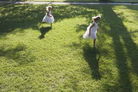 done right lawn care services llc home