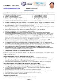 Business Analyst Profile Resume Pmo Manager Resume Sample Resume For Your Job Application