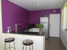 peinture dans une cuisine beau idée peinture cuisine tendance et couleur peinture cuisine
