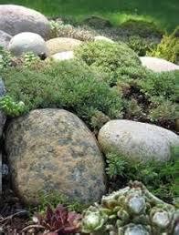 121 best gardening rock garden images on pinterest landscaping