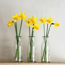 single stem vases perfect small glass vases med art home design posters