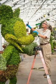 Mickey Mouse Topiary Epcot International Flower U0026 Garden Festival Fun Expands To 90