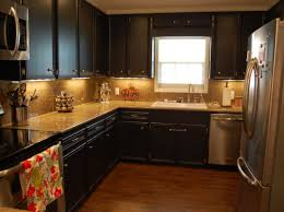 cabinet paint kitchen cabinets thrilling paint kitchen cabinets