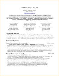 Sample Finance Manager Resume by Telecom Manager Resume Resume For Your Job Application