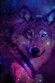 imagenes de fondo de pantalla lobos lobo galaxy fondos background wallpaper pinterest fondos