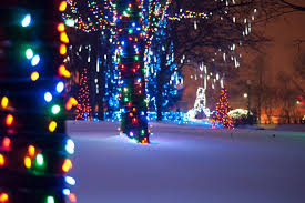 christmas lights at the zoo indianapolis best zoo lights winners 2016 10best readers choice travel awards