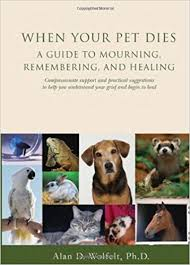 when a pet dies when your pet dies a guide to mourning remembering and healing