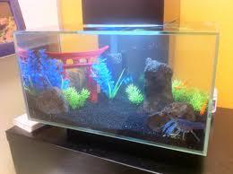 quidditch aquarium decoration build album on imgur