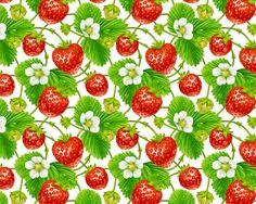 strawberry patch strawberry jam summer strawberries fabric