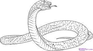 drawn serpent green pencil and in color drawn serpent green