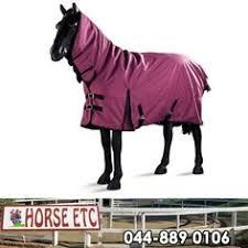 Waterproof Outdoor Rugs Keep Your Horse Dry And Warm With A Bluesteel Hooded Waterproof