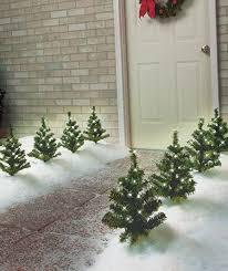 christmas tree solar lights outdoors charming inspiration christmas tree pathway lights outdoor spiral