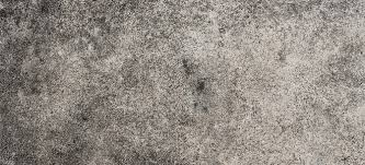 How To Get Rid Of Black Mold In Bathroom How To Remove Mold From Concrete Floors Doityourself Com