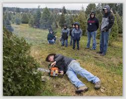 Washington Christmas Tree Farms - prior news links tree and neighbor law for homeowners and