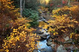 West Virginia scenery images File fall foliage forest creek scenery sunset west virginia jpg