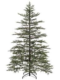 noble christmas tree northlight 7 5 norfolk pine artificial christmas tree with clear