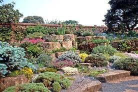 rock garden ideas that will put your backyard on the maprock for
