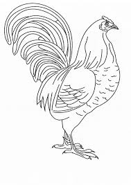 coloring page of a chicken chicken coloring page animals town animals color sheet chicken