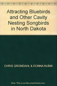 buy attracting songbirds to your backyard hundreds of easy ways to