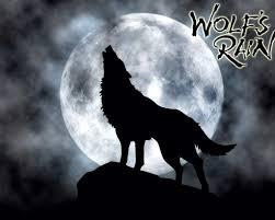 wolf u0027s rain anime amino