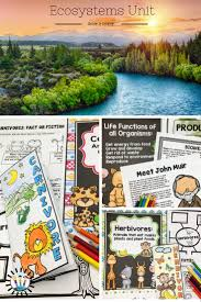 ecosystems abiotic and biotic factors lesson ideas pinterest