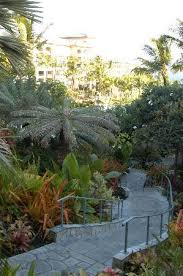 Backyard Walking Paths Lush Landscape Walking Paths Picture Of The Ritz Carlton