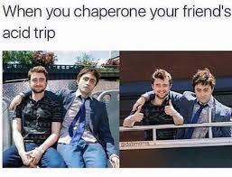 Daniel Radcliffe Meme - 53 savage af memes for funny people funny people memes and