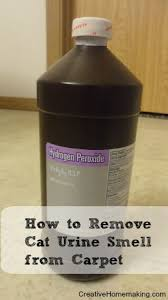 How To Get Dry Stains Out Of Carpet Removing Cat Urine Smell From Carpet