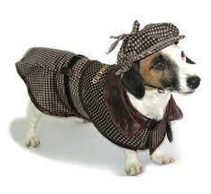 Sherlock Halloween Costumes Halloween Dog Costume Ideas 32 Easy Cute Costumes