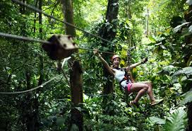 Treetop Canopy Tours by Red Frog Beach Canopy Bocas Del Toro Real Deal Team Experience