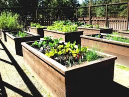 Small Garden Bed Design Ideas by Design Small Garden Designs For Gardens Lawn Awesome Backyard