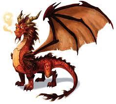25 dragon pictures ideas dragons dragon