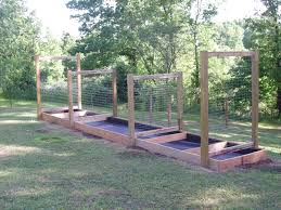 my raised bed structure with trellises photo