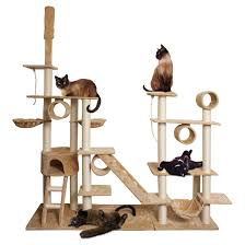 oxgord premium cat tree tower condos tanga