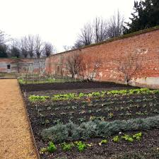 the kitchen garden project at blickling u2014 life at 139a