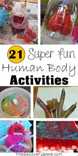 21 super fun human body activities you will find plenty of