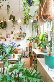 Inside Garden by Con El Papel Bananella Sería Como Estar Rodeada De Plantas Un