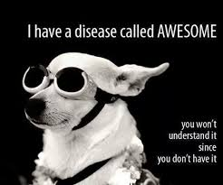 Memes About Being Awesome - being awesome funny pictures quotes memes funny images funny