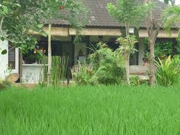 the top 10 things to do near ulun ubud resort u0026 spa tripadvisor