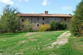 umbria organic farm with olive grove fruit trees for sale in