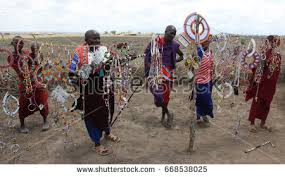 masai stock images royalty free images vectors