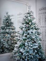 o tannenbaum christmas tree inspiration and holidays
