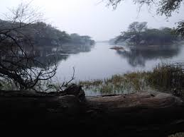 sultanpur national park wikipedia