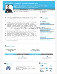 What Is Visual Resume Visual Resume Samples Visual Cv Visual Curriculum Vitae Format