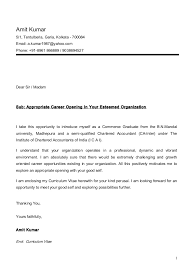 cv cover letter amit cv ca inter with cover letter