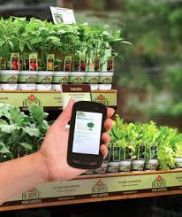high tech vegetable gardening vegetable gardener