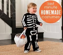 Italian Halloween Costume Homemade Halloween Costumes Dogs Diy Dog Halloween Costumes