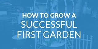 15 easy plants new gardeners should grow