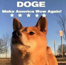 How To Make Doge Meme - doge america wow jpg