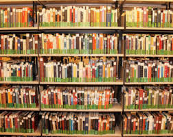 Bookcase Backdrop Book Store Etsy